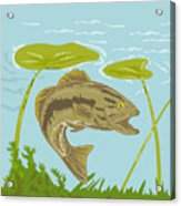 Largemouth Bass Fish Swimming Underwater  Acrylic Print by Aloysius Patrimonio
