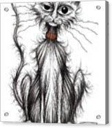 Larry The Cat Acrylic Print