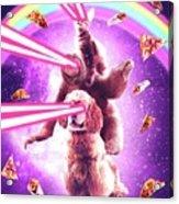 Laser Eyes Space Cat Riding Sloth, Dog - Rainbow Acrylic Print