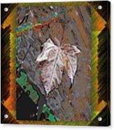 Last Leaf Standing Acrylic Print