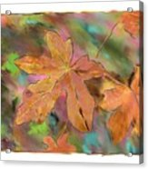 Last Of The Fall Leaves Abstract Digital Art Acrylic Print
