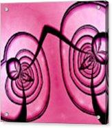 Last Tango Acrylic Print by Paul Wear