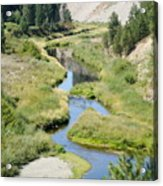 Latah Creek Acrylic Print
