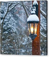 Late Afternoon Snow Acrylic Print by Sandra Bronstein