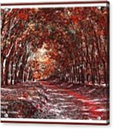 Late Autumn Avenue H A With Decorative Ornate Printed Frame. Acrylic Print