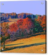Late Fall Biltmore Estates Acrylic Print