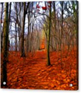 Late Fall In The Woods Acrylic Print