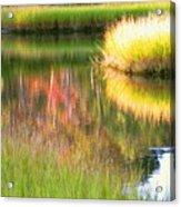 Stillness Of Late Summer Marsh  Acrylic Print