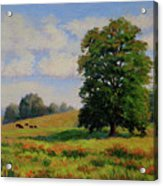 Late Summer Pastoral Acrylic Print
