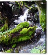 Laughing Waters Acrylic Print by JoAnn SkyWatcher