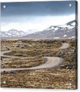Lava Field In Iceland Acrylic Print