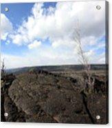 Lava Field Acrylic Print