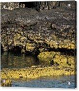 Lava Tubes Puerto Egas Acrylic Print