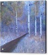 Lavendar Birch  Acrylic Print