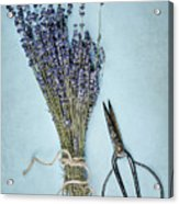 Lavender And Antique Scissors Acrylic Print
