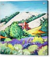 Lavender At Matanzas Creek Acrylic Print