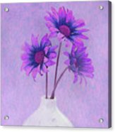 Lavender Chrysanthemum Still Life Acrylic Print