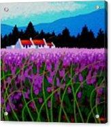 Lavender Field - County Wicklow - Ireland Acrylic Print