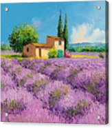 Lavender Fields In Provence Acrylic Print