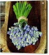 Lavender Flower  Acrylic Print