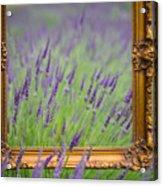Lavender Frame Acrylic Print