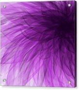 Lavender Spiral Acrylic Print