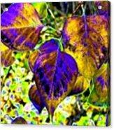 Lavish Leaves 3 Acrylic Print