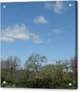 Lazy Afternoon Acrylic Print by Hasani Blue