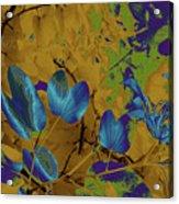 Leaf And Flower 10 Acrylic Print