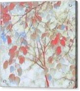 Leaf Me 4 Acrylic Print