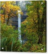 Leaf Peeping And Waterfall Acrylic Print
