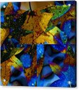 Leaf Peeping Acrylic Print