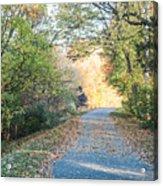 Leaf-strewn Path Acrylic Print