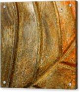 Leaf Structur Acrylic Print