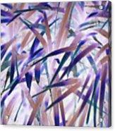 Leaf Tips Acrylic Print