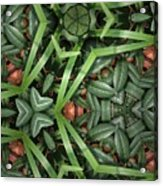 Leafy Greens Acrylic Print