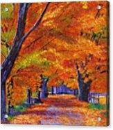 Leafy Lane Acrylic Print by David Lloyd Glover