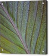 Leafy Texture Acrylic Print