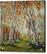 Leaning Birches Acrylic Print by Charles Hetenyi