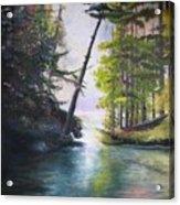 Leaning Tree Lake George Acrylic Print