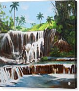 Leaping Waterfall Acrylic Print