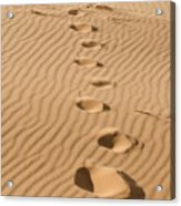 Leave Only Footprints Acrylic Print
