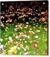 Leaves 2 Acrylic Print