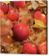 Leaves And Apples Acrylic Print