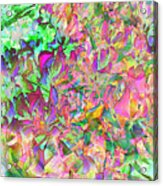 Leaves And Colors Acrylic Print