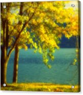 Leaves And Light Acrylic Print