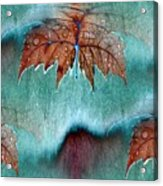 Leaves And Rain 6 Acrylic Print