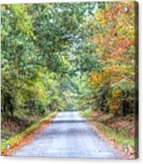 Leaves Changing In The Fall Near Collierville,tn Acrylic Print