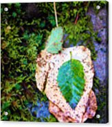 Leaves In A Pile Acrylic Print