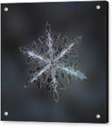 Leaves Of Ice II Acrylic Print by Alexey Kljatov